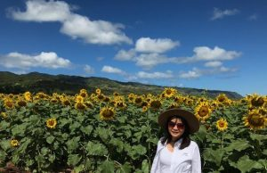 Photo of Donna in sunflower field